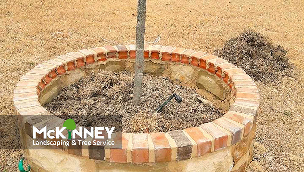 Gallery - Cement, Concrete, & Masonry: Brick Border Tree