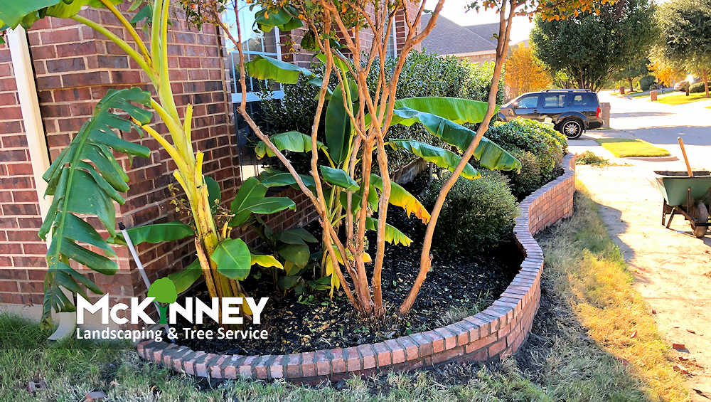 Gallery - Cement, Concrete, & Masonry: Brick Border Flower Bed