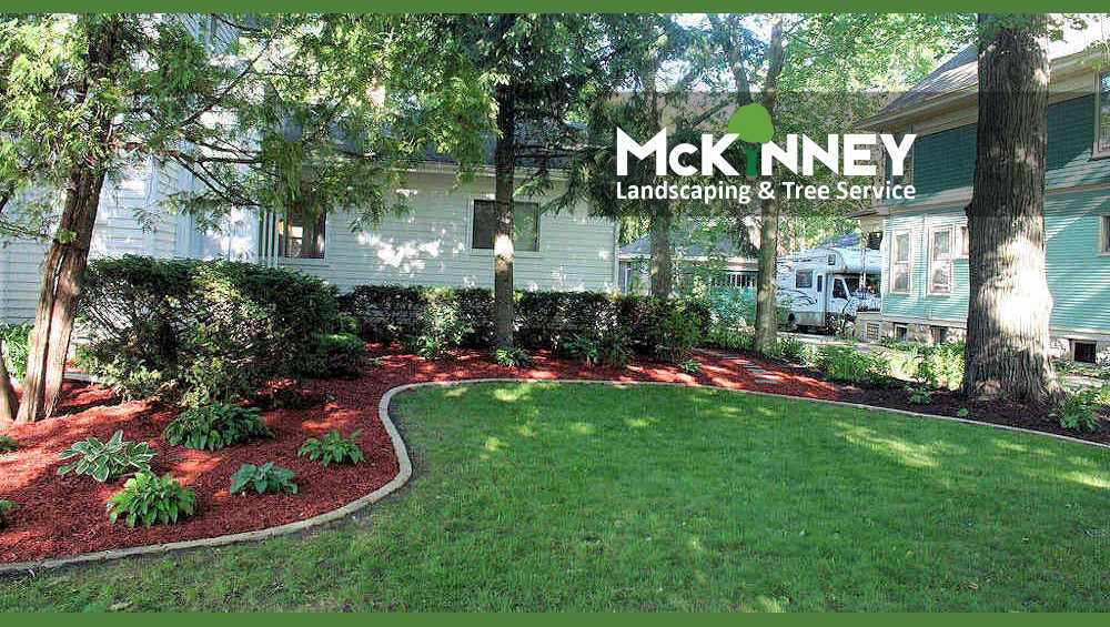 Gallery - Mowing: New Landscaping