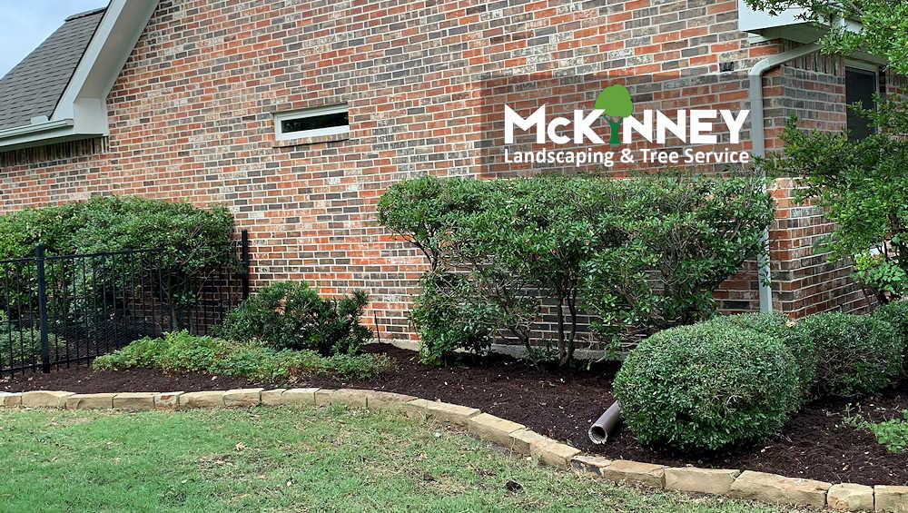 Gallery - Weeding & Mulch: Back of House