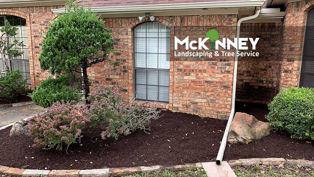 Gallery - Weeding & Mulch: Front Bedroom